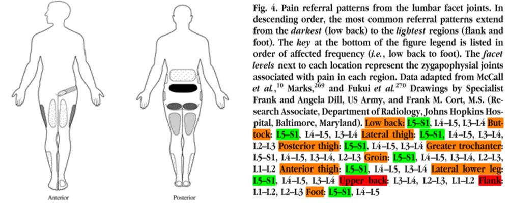 come curare il mal di schiena milano